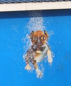 Dog mural, part of tropical art project. Tropical art nearing completion.
