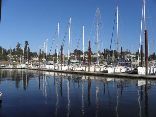 Sailboat moorage at I-dock.