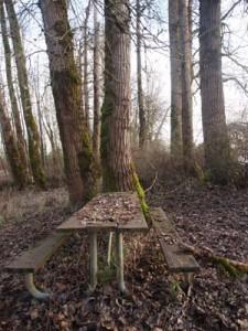 Picnic Table in Winter