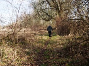 The Coon Island Trail